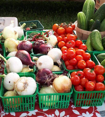alliston-farmers-market